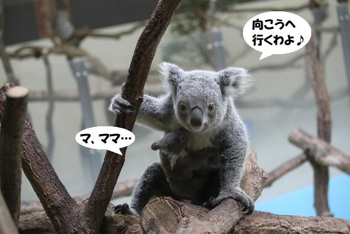 172 - コピー (2)