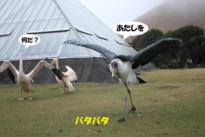 125 - コピー