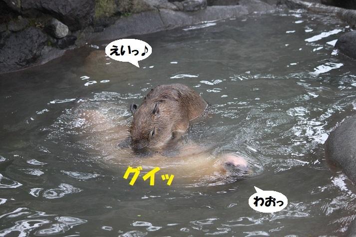 164 - コピー