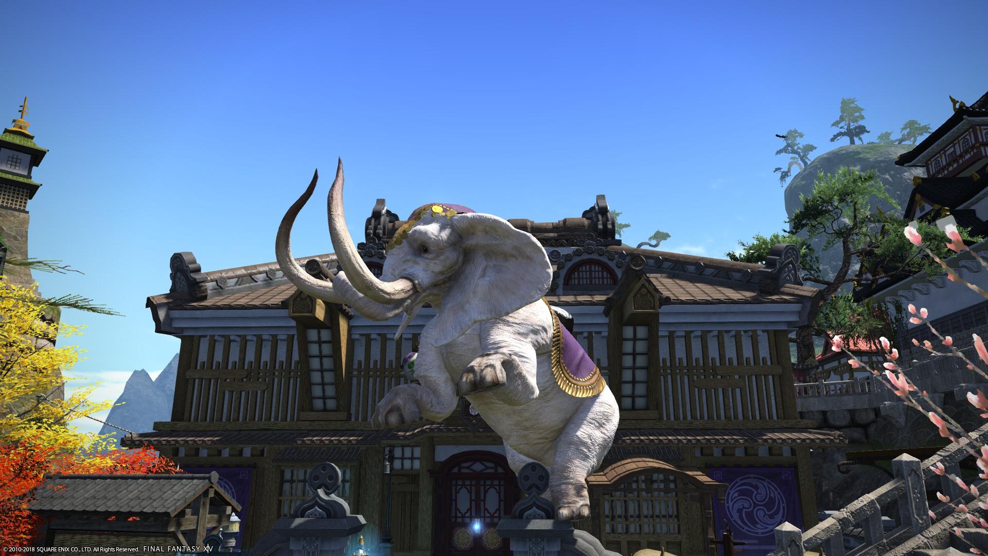 象さんゲット