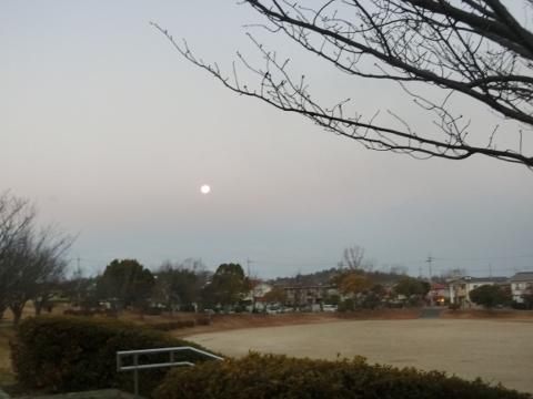 2018-01-03 散歩 005 (480x360)