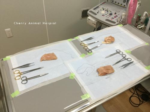 手術、縫合
