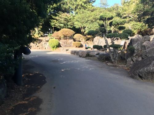 伊豆シャボテン公園4