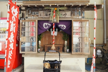 H30010612誕生寺初詣