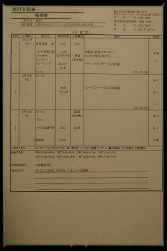 H30021705平昌オリンピック
