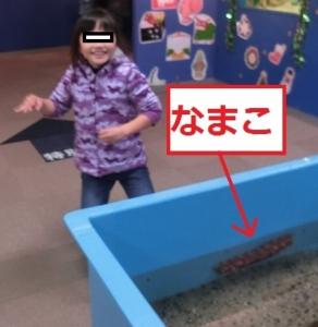 志摩マリン体験7