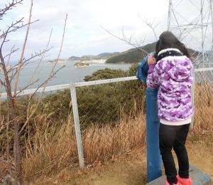 イルカ島散策13