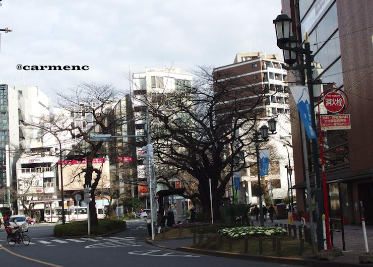 駅前富士見通りから