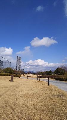 s-みずどり公園4