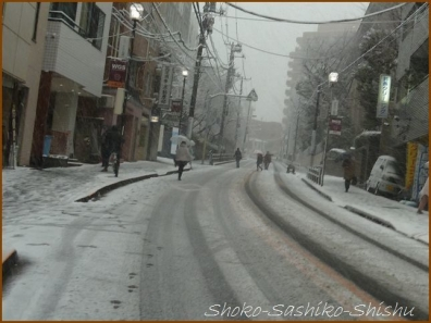 20180124  道  1    雪の日