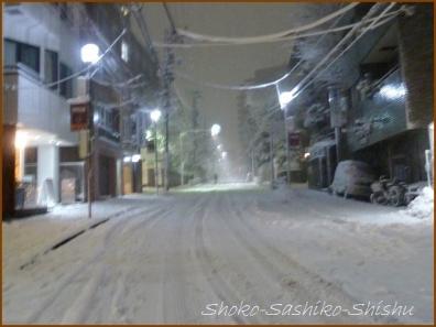 20180124  道  10    雪の日