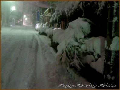 20180124  道  15    雪の日