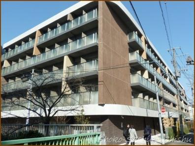 20180212  ビル  2    神田川で