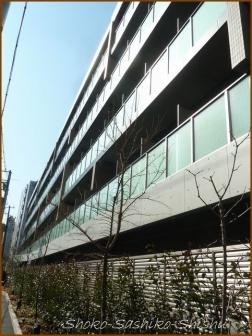 20180212  ビル  6    神田川で