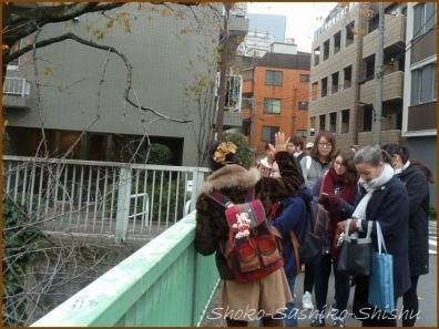 20180222 細川庭園  1    細川庭園・椿山荘