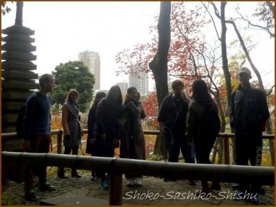 20180222 細川庭園  5    細川庭園・椿山荘