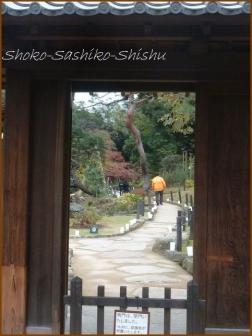 20180222 細川庭園  13    細川庭園・椿山荘