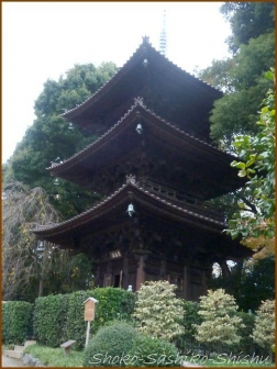 20180222 椿山荘  4    細川庭園・椿山荘