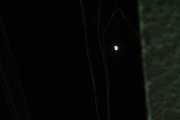 欠ける月と電線