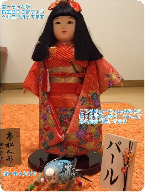 ⑨ぱーちゃんの市松人形