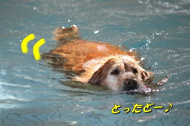 初泳ぎ孤独のグルメ 016