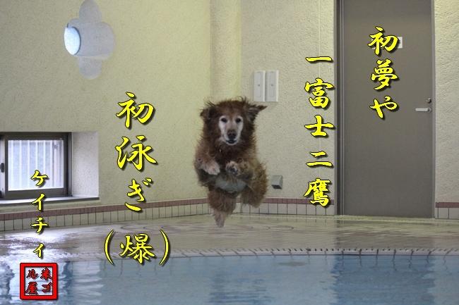 初泳ぎ孤独のグルメ 160