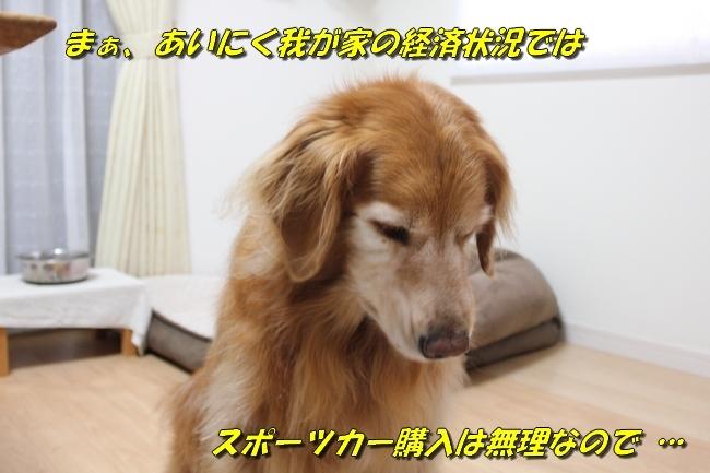 未踏峰新聞テーブル 013