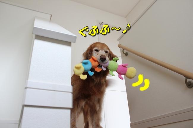 芋虫おもちゃ 052