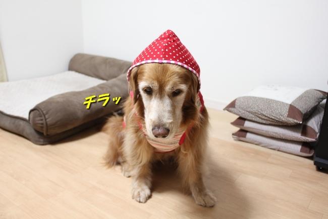 赤ずきんちゃん 017