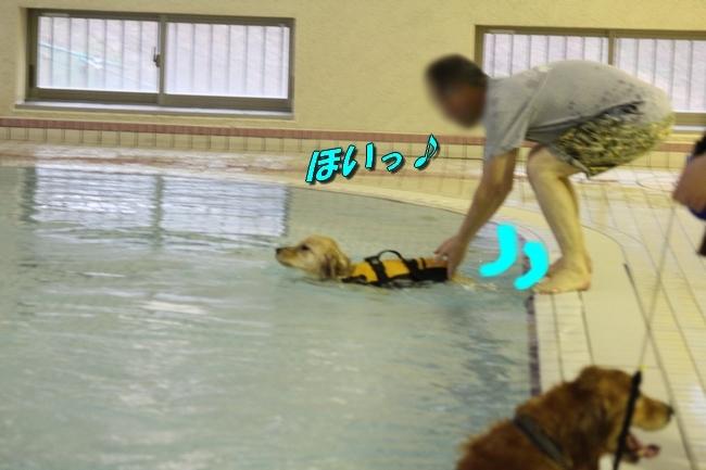 キロロちゃん仁くんサム君プール 183