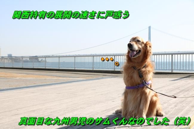 明石大蔵海岸サム君と 081