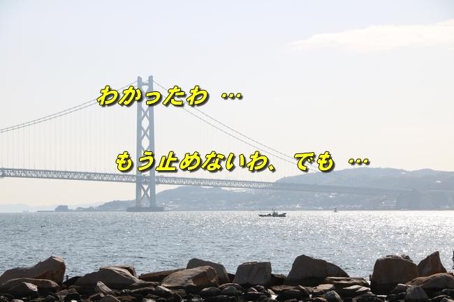 明石大蔵海岸サム君と 122