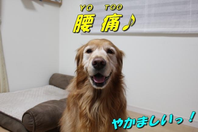 笑顔とお礼 004