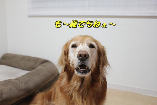 表情 004
