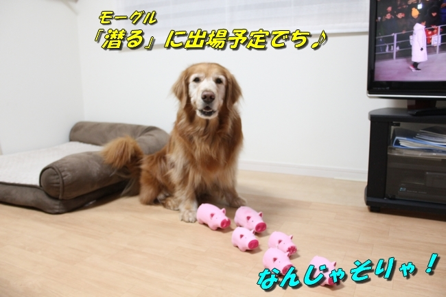 ピョンチャン五輪開会式 042