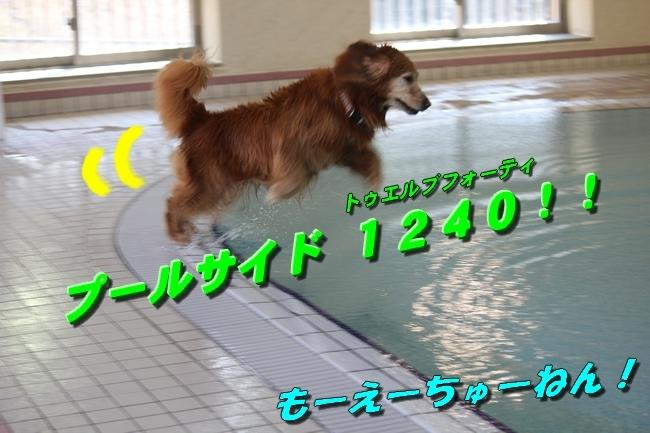 プールハーフパイプ 115