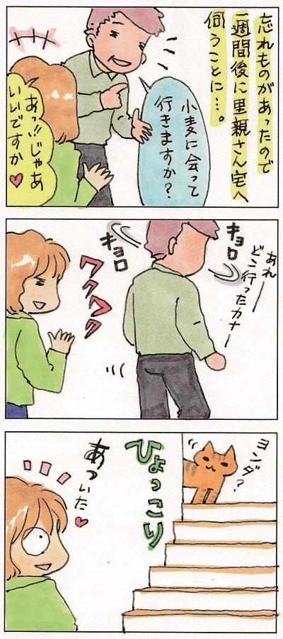 清々しい胡二郎君 2-3