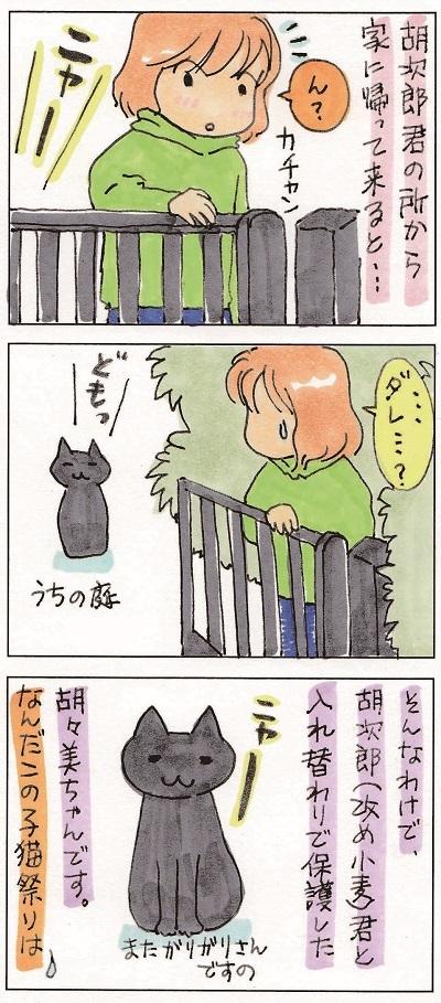 どんどん子猫まつり 2-2