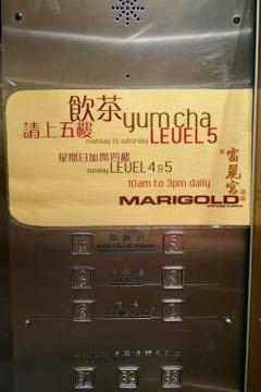 マリーゴールド - 1 (1)