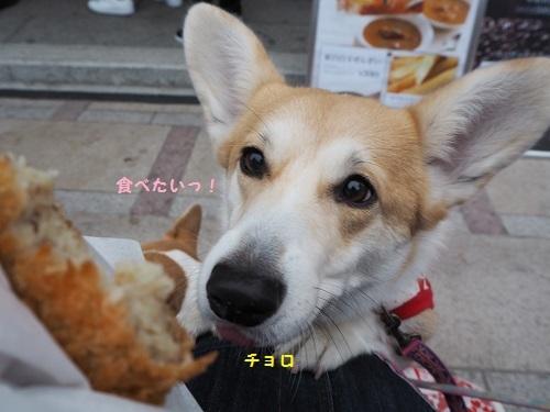 食べたいコロッケ