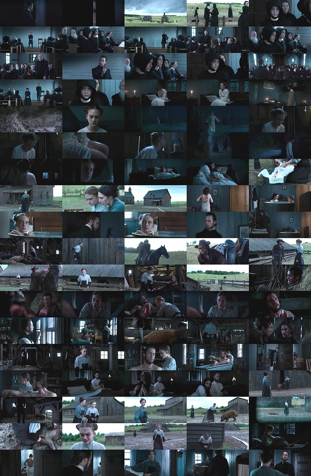 ブリムストーン (2016)