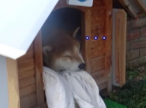 2おやすみ中