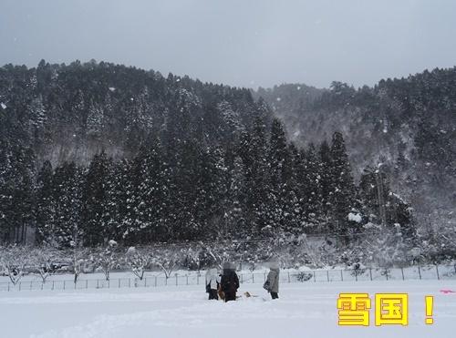 2美山で雪遊び