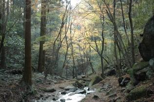 水の森16120203