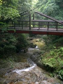 水の森17080704