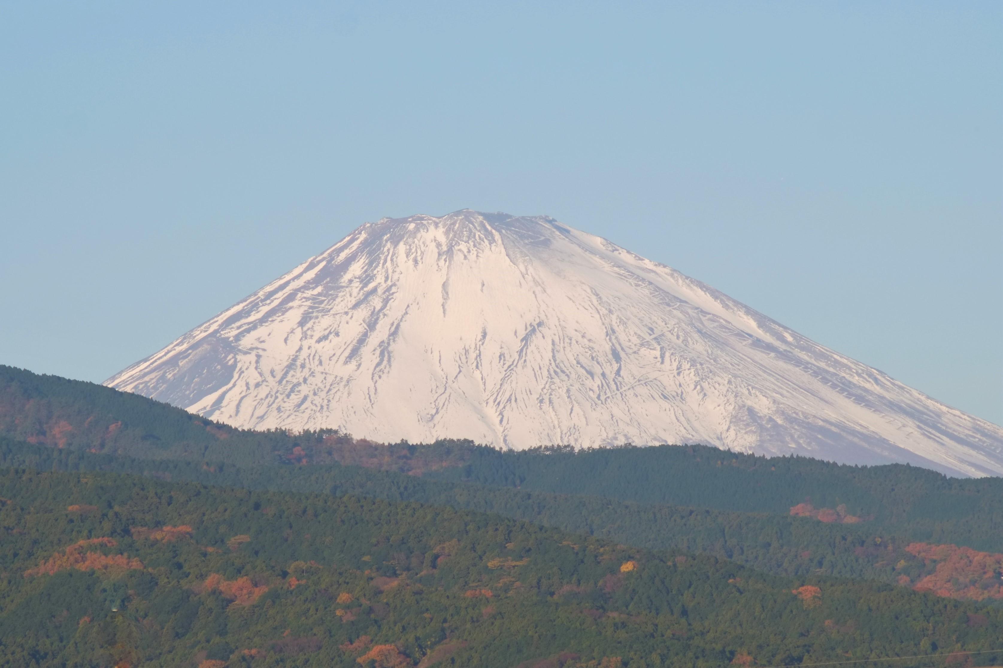 fujin200909.jpg