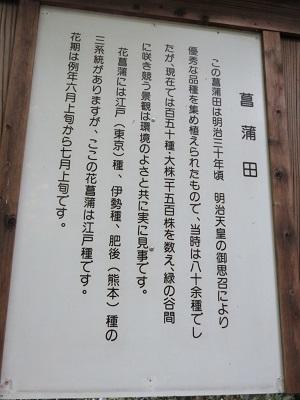 IMG_7629 菖蒲田