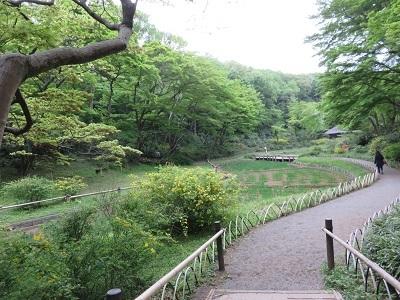 IMG_7630 菖蒲田