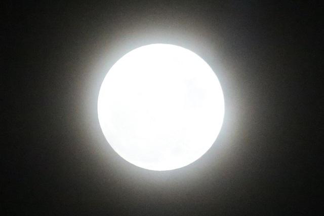 まるで皆既日食時のコロナの様なお月様