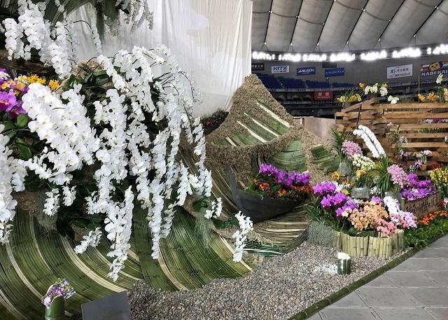 ディスプレイ部門オープンクラス 奨励賞 日本洋蘭生産協会東日本支部(神奈川沖蘭の浪裏)